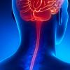 Meningite Asséptica e Viral Encefalite Herpética