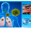 Avanços em Tuberculose